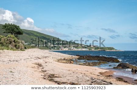 風景 高地 スコットランド 海 ヨーロッパ 草原 ストックフォト © phbcz