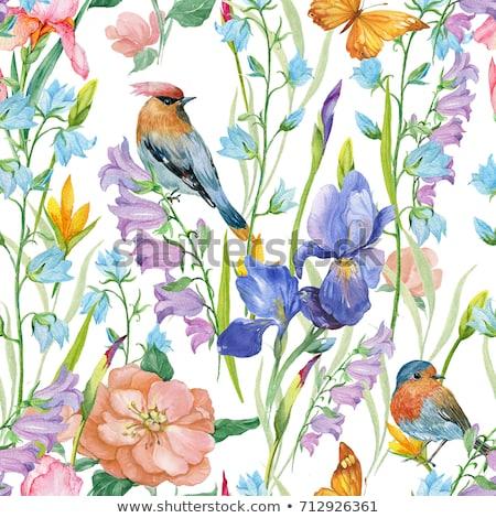 Natural floral Seamless background with birds Stock photo © Elmiko