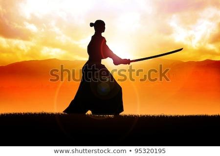 Szamuráj naplemente illusztráció nindzsa férfi háttér Stock fotó © adrenalina