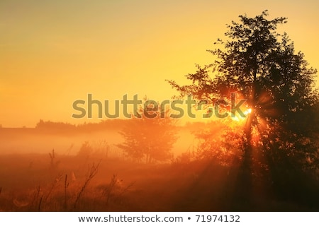 Sunrays passing through clouds Stock photo © dutourdumonde
