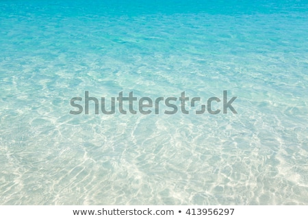 Clear water in Bahamas Stock photo © epstock
