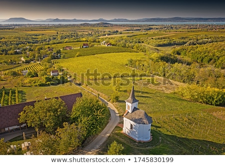 Landscape from lake Balaton in Hungary Stock photo © digoarpi