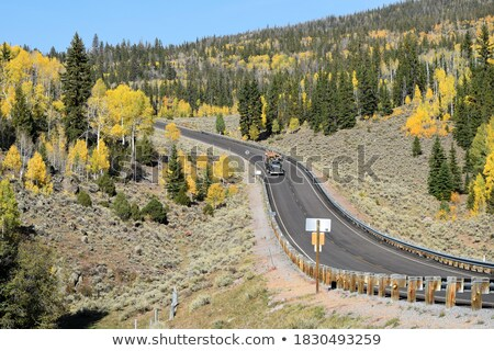 Logging road through mountains in autumn Stock photo © pictureguy