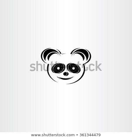 panda · icon · gezicht · leven · jonge · schone - stockfoto © blaskorizov