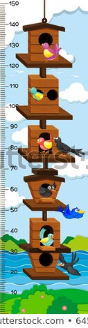 Growth mearsuring chart with birds in birdhouse Stock photo © colematt