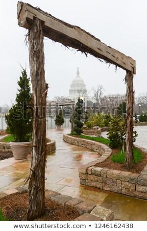 Capitol Building framed by Botanic Gardens Stock photo © backyardproductions