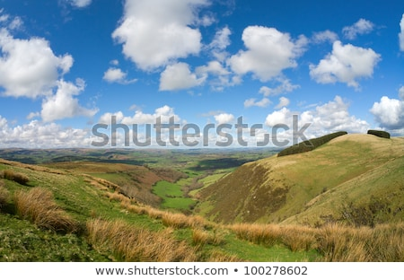 Welsh fields, view from the Mynydd Epynt. Stock photo © latent