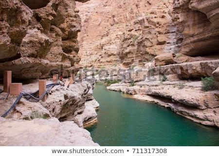 Оман изображение воды пород ладонями природы Сток-фото © w20er