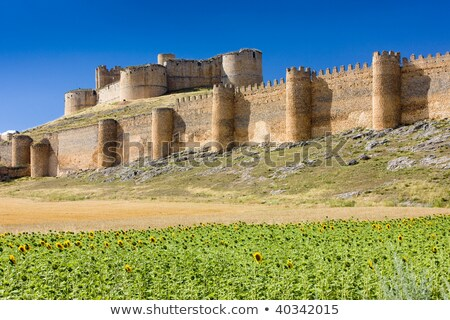 Berlanga de Duero Castillo  Stock photo © LianeM