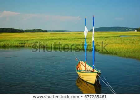 photo of sailboats along the dock stock photo © epstock
