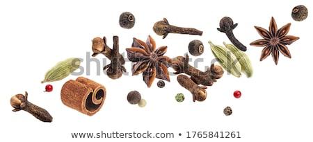 cinnamon and anise Stock photo © M-studio