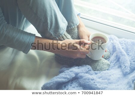 woman looking from a window of her house on a winter day stock photo © lightpoet