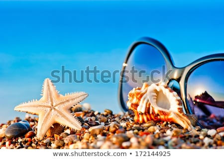 Ocean scene and beach objects Stock photo © bluering