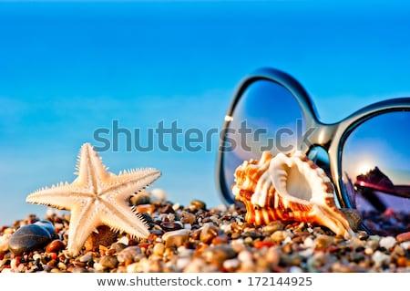 ビーチ · オブジェクト · 休暇 · デザイン · 芸術 · 旅行 - ストックフォト © bluering