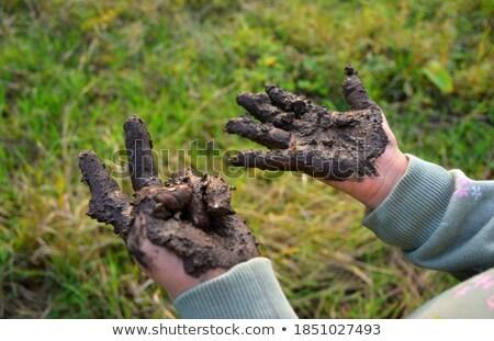 Boldog lány mutat sáros kezek cserépedények műhely Stock fotó © wavebreak_media