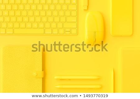 Idea - Modern Laptop Keyboard Concept. 3D. Stock photo © tashatuvango