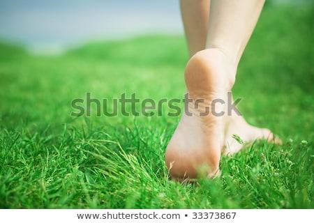 Mezítláb mező természet tájkép szépség nyár Stock fotó © IS2