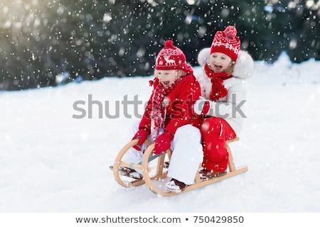 Dzieci gry sanki śniegu dziewczyna górskich Zdjęcia stock © IS2