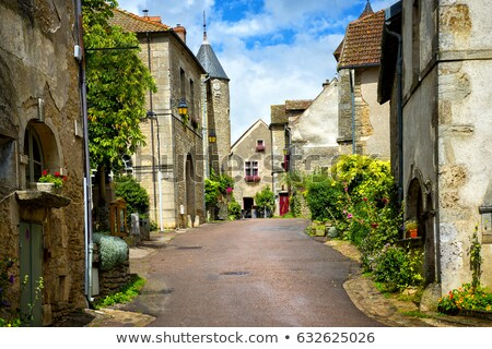 Cote d'Or vineyard in Burgundy Stock photo © Hofmeester