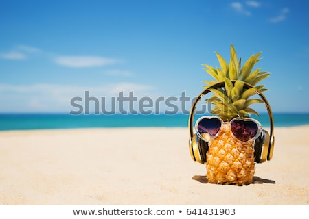 travel vacation and music concept stock photo © karandaev
