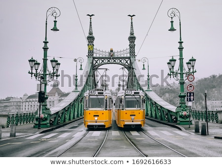 Liberty Bridge on Danube river in Budapest coat of arms and deta Stock photo © xbrchx