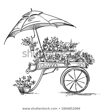 Plant cart shop stall Stock photo © bluering
