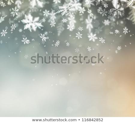 陽気な クリスマス 雪 祭り デザイン ストックフォト © SArts