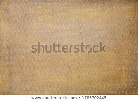 abstract primed oil color stock photo © prill