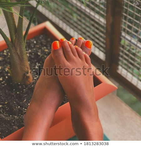red nailed toes of a woman on the beach Stock photo © feedough