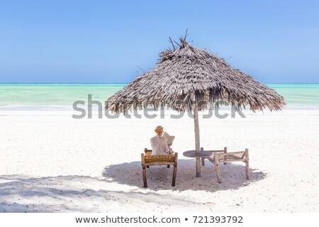 zanzibar white sandy beach and wooden chairs stock photo © albund