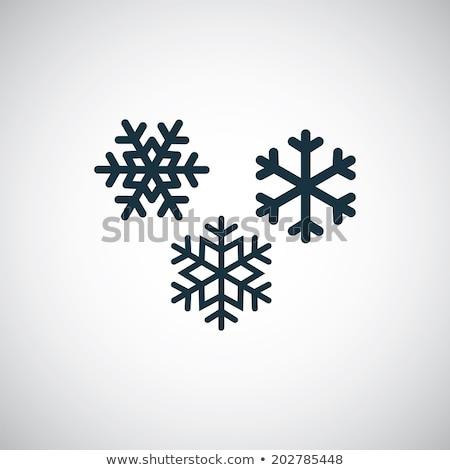 christmas or winter snowflakes vector icons stock photo © redkoala