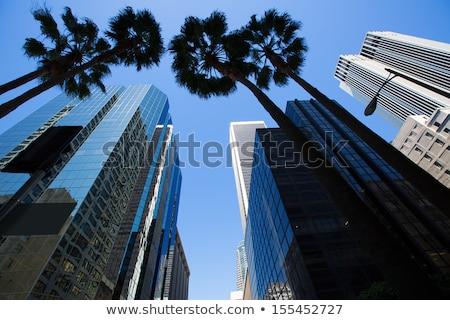 Szczegół nowoczesne wysoki wieżowce Los Angeles działalności Zdjęcia stock © CaptureLight