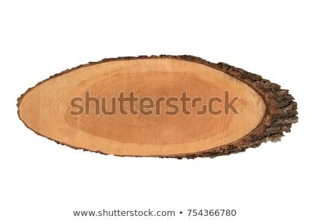 madeira · fatia · exibir · fatias · natureza · indústria - foto stock © silkenphotography