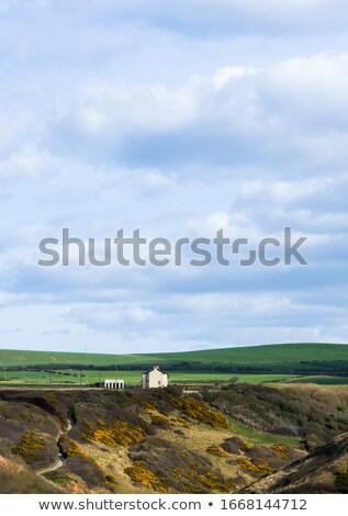 Groene heuvel verticaal blauwe hemel hemel voorjaar Stockfoto © tilo