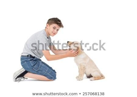 Boy stroking dog while kneeling Stock photo © wavebreak_media