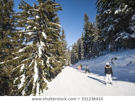 toz · kar · manzara · Kayak · başvurmak - stok fotoğraf © romitasromala
