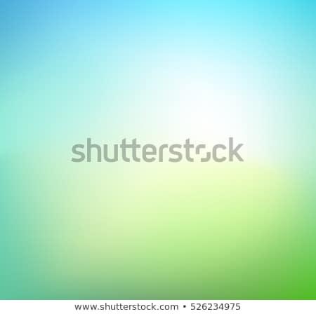 Foto d'archivio: Verde · blu · foglie · abstract · umido · flora