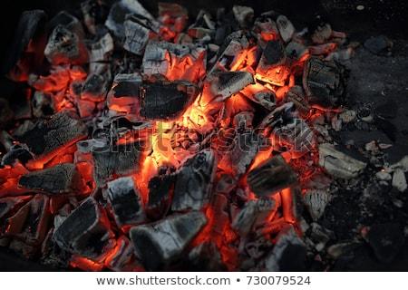 égő faszén tűz fa háttér füst Stock fotó © Dar1930