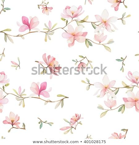 Bahar sakura doku duvar kağıdı çim Stok fotoğraf © carodi