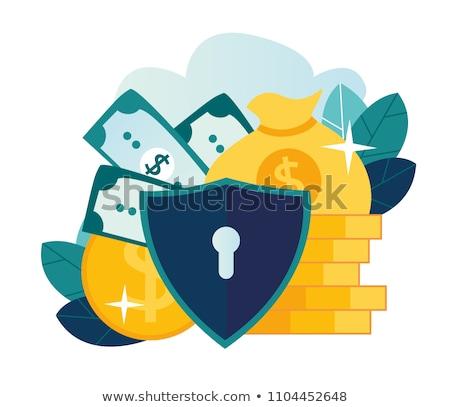 Kölcsön védelem ikon terv üzlet izolált Stock fotó © WaD