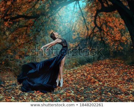 Balerin poz açık havada seksi siyah doğru Stok fotoğraf © bezikus