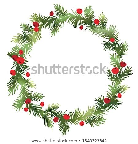 Christmas krans frame vector groene Stockfoto © frimufilms