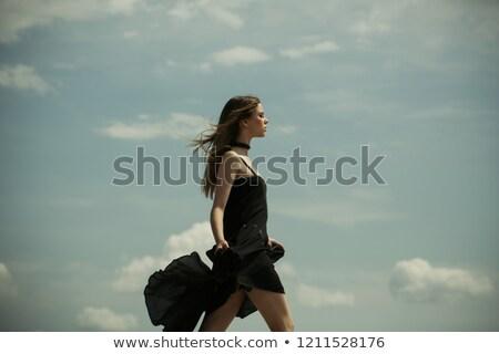 Dauer haj szett lány siker üzlet Stock fotó © toyotoyo