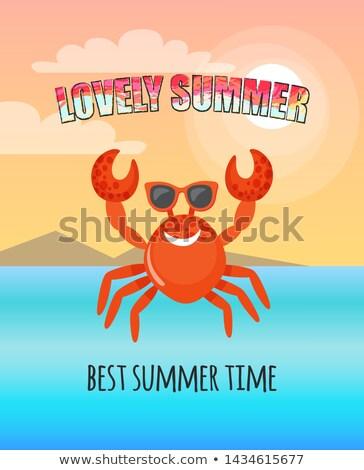 Kırmızı yengeç yaz kartpostal vektör en iyi Stok fotoğraf © robuart
