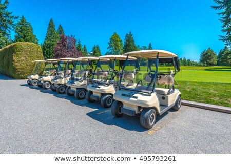 Golf buggies in a row. Stock photo © lichtmeister