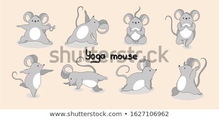 Szürke patkány jóga egér meditál vektor Stock fotó © orensila