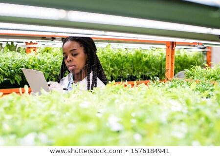 Jeunes africaine biologiste note permanent Photo stock © pressmaster