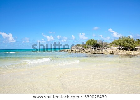 larga beach cayo coco cuba stock photo © phbcz