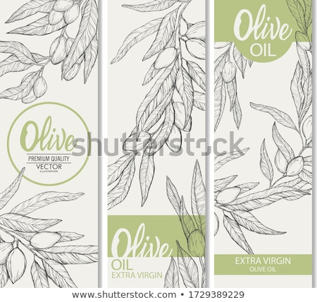 Black vector olive oil label with branches Stock photo © blumer1979