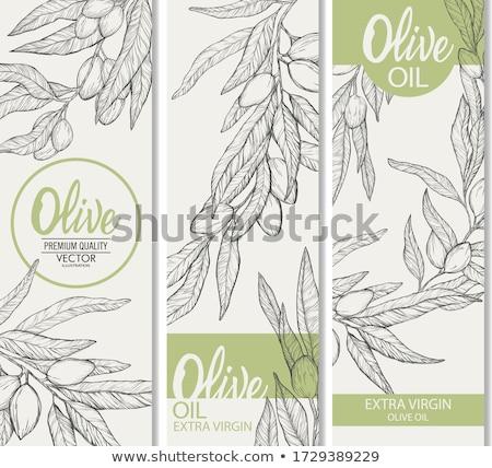 Noir vecteur huile d'olive étiquette olive Photo stock © blumer1979